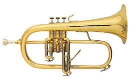 bugel